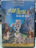 挖寶二手片-T04-201-正版DVD-動畫【小姐與流氓2狗兒逃家記】-迪士尼(直購價)