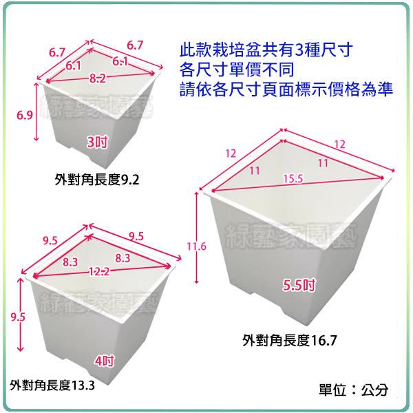 【綠藝家005-D110-WI】四方型栽培盆3吋-白色(厚)