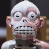 人體模型拼裝骷髏日本韓國益智恐怖鬼屋惡搞兒童節整蠱偶桌面玩具「時尚彩虹屋」