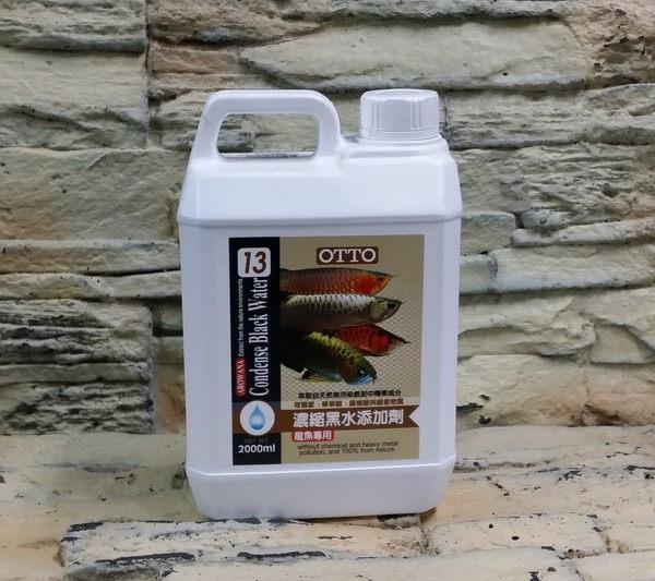 【西高地水族坊】OTTO奧圖 龍魚專用濃縮黑水營養添加劑(2L)
