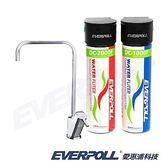 【EVERPOLL】愛惠浦科技守護升級全效淨水組全效完美版淨水系統) (DCP-3004)
