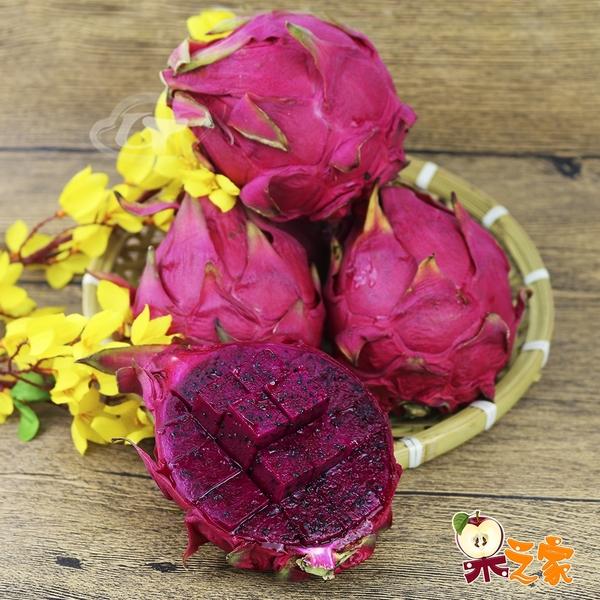 果之家 產地直送鮮甜甘美紅肉火龍果5台斤(約7-9顆入)