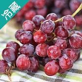 美國紅葡萄/3台斤(600g±5%/台斤)【愛買冷藏】