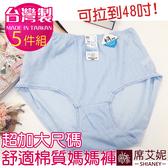 MIT女性加大尺碼棉質三角褲 /35~48吋腰圍適穿 媽媽褲 台灣製造 No.521 (5件組)-席艾妮SHIANEY
