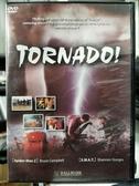 挖寶二手片-D50-正版DVD-電影【龍捲風】-布魯斯坎貝爾 夏儂史特吉