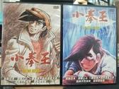 挖寶二手片-B02-正版DVD-動畫【小拳王:登峰造極+光榮之戰/系列2部合售】-(直購價)