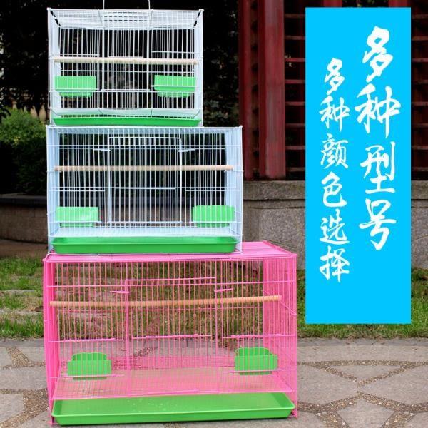 YAHOO618☸ 鳥籠大號超大鴿子籠八哥畫眉鵪鶉斑鳩虎皮鸚鵡養殖通用籠子特大號mousika
