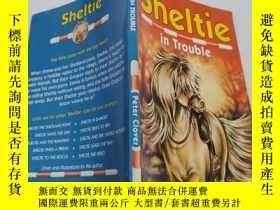 二手書博民逛書店sheltie罕見in trouble 謝爾蒂有麻煩了...Y200392