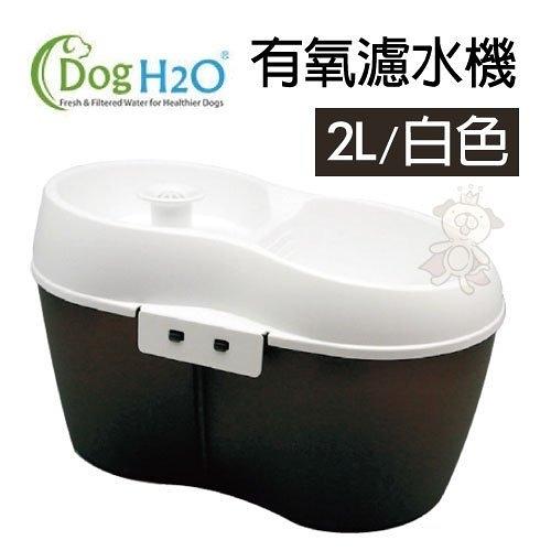 『寵喵樂旗艦店』Dog&CatH2O《有氧濾水機2L-白》專為寵物設計有隔油設計入水的2L飲水機