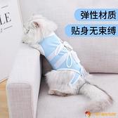 貓咪絕育服透氣術后防舔防掉毛斷奶服款手術服【小獅子】
