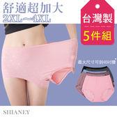 女性超加大尺碼內褲 2XL-7L /40-46吋腰圍可穿 台灣製造 No.1106 (5件組)-席艾妮SHIANEY