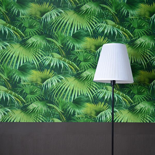 進口牆紙 rasch2018 朗飾53cm×10m/1卷 素色壁紙 Colors 518184