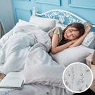 床包 / 雙人加大【微月遠蝶】含兩件枕套 60支天絲 戀家小舖台灣製AAU301