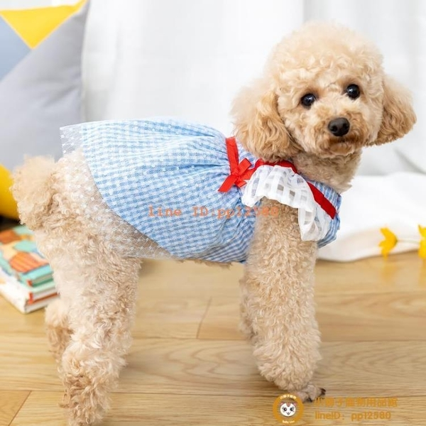 新款寵物夏天裙子貓咪狗狗夏裝衣服帶扣子透氣薄款夏季衣服小型犬小狗狗【小獅子】