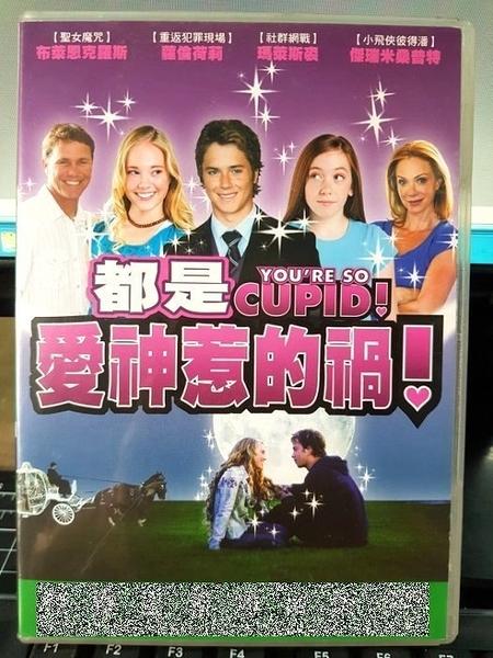 挖寶二手片-F58-003-正版DVD-電影【都是愛神惹的禍】-蘿倫荷莉 瑪萊斯裘 布萊恩克羅斯 傑瑞米桑普