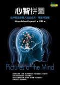 (二手書)心智拼圖:從神經造影看大腦的成長、學習與改變