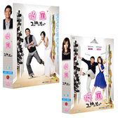 韓劇 - 促銷價★傻瓜DVD (全16集/4片) 金亞中/周尚旭