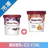 哈根達斯藍姆葡萄+花生冰淇淋473ML【愛買冷凍】