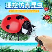 遙控昆蟲動物模型兒童新奇玩具整蠱禮物男孩仿真抖音有趣的小玩意 可可鞋櫃