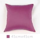 Varin多彩抱枕(含枕心)-紫紅 45cmx45cm 素色/ 小尺寸/ 靠墊/ 腰枕/ 午安枕【MSBT 幔室布緹】
