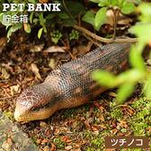 Hamee 日本 PET BANK 超逼真 仿真動物造型 存錢筒 儲金箱 裝飾擺飾 (土龍) 488-572360