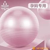 瑜伽球孕婦專用助產分娩健身球減肥兒童感統訓練瑜珈平衡球大龍球