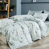 Artis 天絲 床包枕套組-台灣製(單人/雙人/加大) -米蘭花園