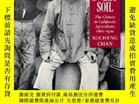 二手書博民逛書店This罕見Bittersweet Soil: The Chin