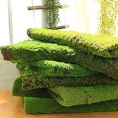 仿真草坪 仿真苔蘚青苔仿真草坪 植物人造草青苔裝飾櫥窗造景假苔蘚草皮盆景