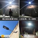 太陽能感應燈太陽能戶外燈雙頭150W太陽能庭院燈戶外燈 朵拉朵
