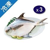 冷凍白鯧450g±10%-尾X3【愛買冷凍】