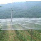 防鳥網 養殖網防鳥網果樹防鳥用的加厚尼龍網天網葡萄架魚塘防鳥網戶外 8號店