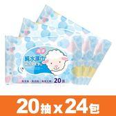 【海淨】純水濕紙巾(20張X24包)~純水99.9%、無香精、無酒精、無螢光劑【台灣製】。