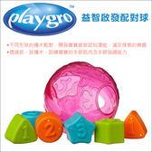 ✿蟲寶寶✿【澳洲Playgro】多樣的形狀 趣味配對 有趣玩耍 益智啟發配對球