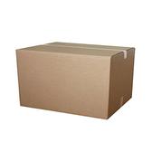 大型箱40×40×60cm