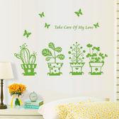 【BlueCat】綠色多肉盆栽蝴蝶飛造景壁貼 貼紙