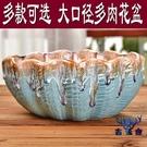 多肉花盆陶瓷簡約大口徑粗陶拼盤組合花盆【...