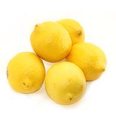 進口黃檸檬2入/盒