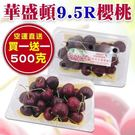 ★紅寶石之果 營養滿點 ★聞名海外超熱賣品種 ★大果粒散發美麗蜜紅色澤