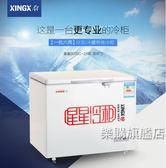大冰櫃家用冷櫃商用展示櫃冷藏冷凍臥式冰箱wy