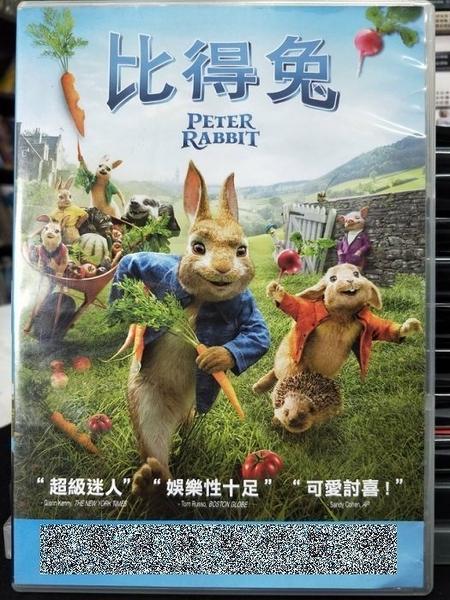 挖寶二手片-B06-116-正版DVD-電影【比得兔】-瑪格羅比(直購價)