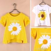 女童短袖t恤2020年夏季純棉中大童7洋氣小雛菊韓版兒童女體桖上衣 一米陽光