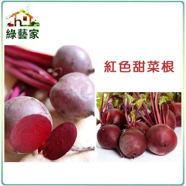 【綠藝家】C09.紅色甜菜根種子100顆