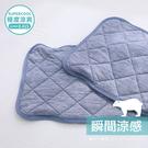 涼感 -5度C/枕巾 枕頭保潔墊1入/瞬涼可洗抗菌 SUPERCOOL接觸涼感[鴻宇]