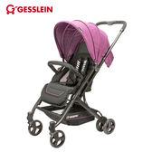 【好禮買就送】德國GESSLEIN騎士藍-歐風輕休旅嬰兒手推車-珊瑚紫