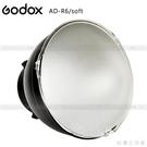 EGE 一番購】GODOX【AD-R6/...