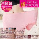 女性 MIT舒適 超加大尺碼內褲 孕媽咪也適穿 2XL-3XL-4XL 台灣製造 No.1106 (5件組)-席艾妮SHIANEY