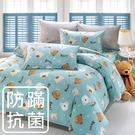 鴻宇 四件式雙人薄被套床包組 麻吉熊藍 防蟎抗菌 美國棉授權品牌 台灣製2216