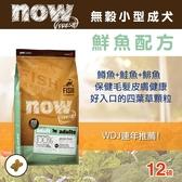 【毛麻吉寵物舖】Now! 鮮魚無穀天然糧 小型犬配方-12磅-狗飼料/WDJ推薦/狗糧