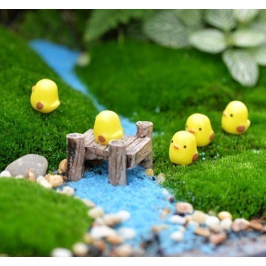 黃色小雞多肉植物微景觀(單隻) CARMO【A030003】